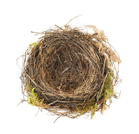 Navigating An Empty Nest Relationship